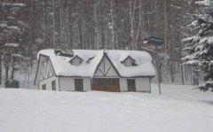 关于2020年第一场雪的作文精选10篇