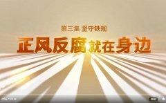 《正风反腐就在身边》第三集《守护民生》解说词全文
