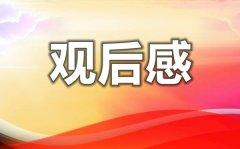 庆祝中国共产党成立100周年大型文艺演出观后感5篇